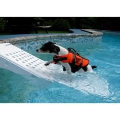 Rampe für Hunde