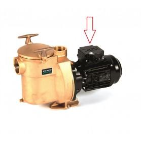 Sta-Rite BRD-1 1/2 PS 230V Bronzepumpenersatzeinheit